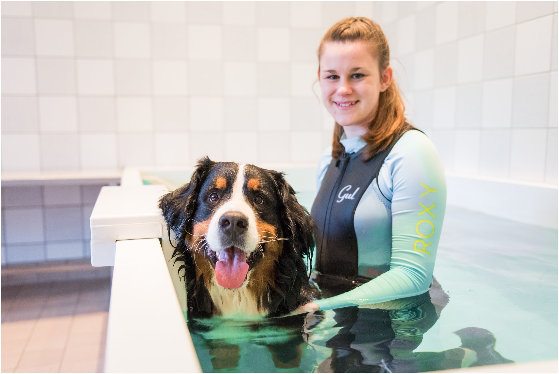dog hydrotherapy in Suffolk