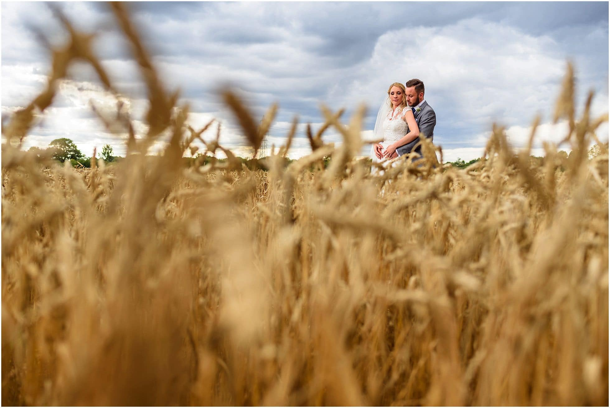 Corn field wedding portraits