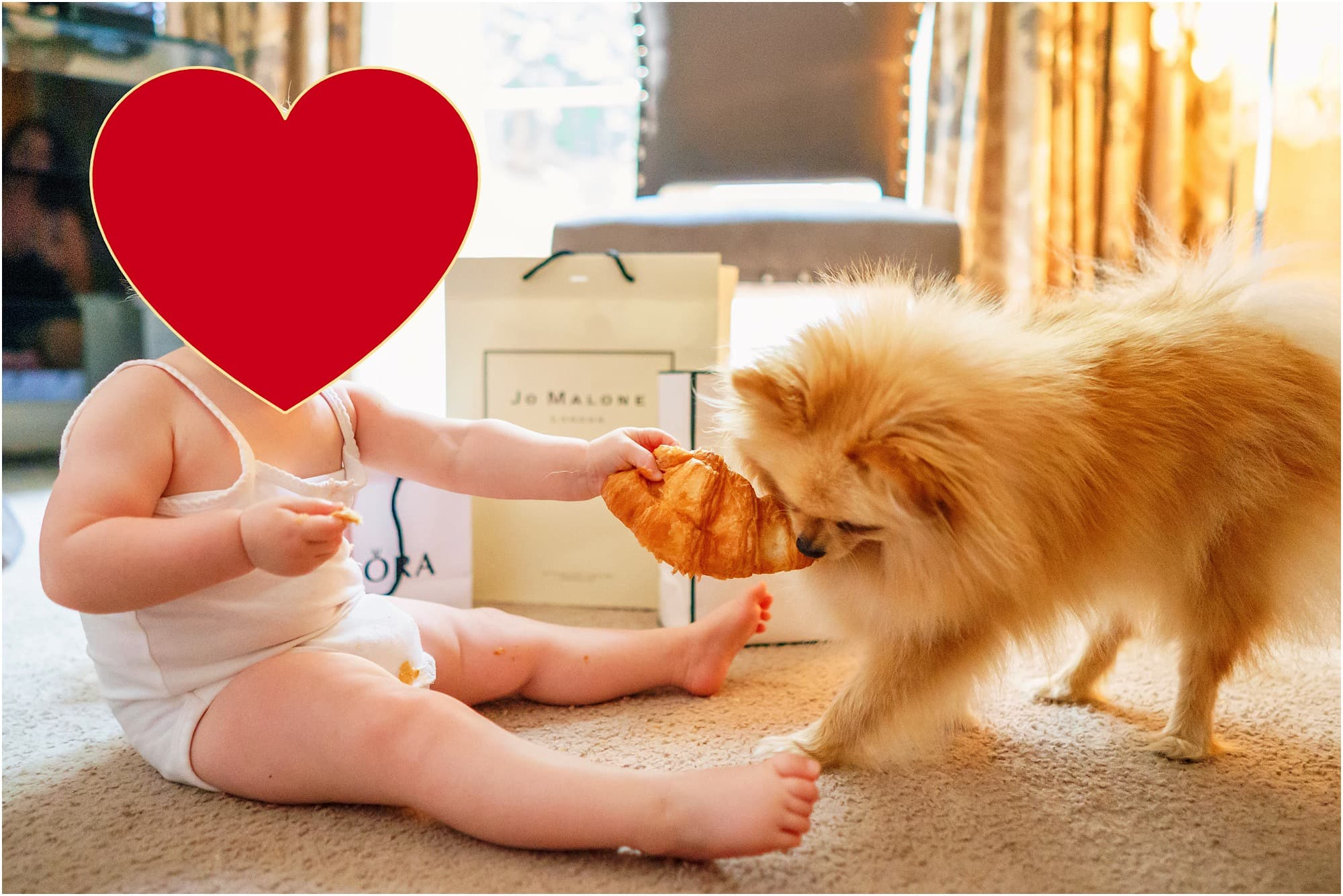 the puppy and the baby - funny picture